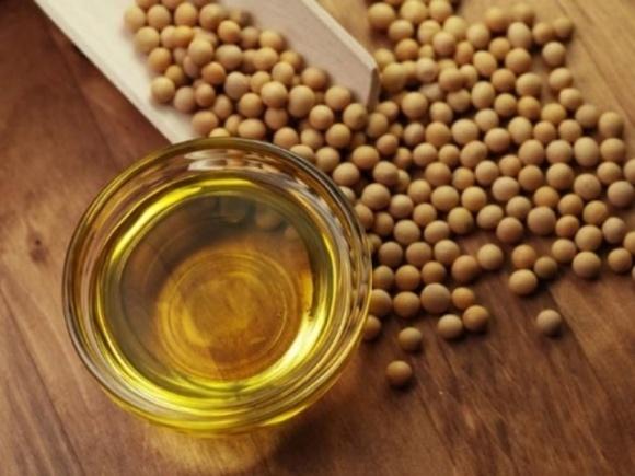 Экспорт украинского соевого масла достиг рекордного уровня фото, иллюстрация