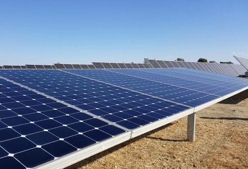 На Херсонщині молочна ферма продає сонячну електроенергію фото, ілюстрація