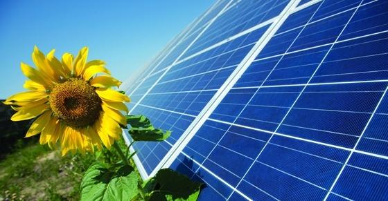 На Херсонщині побудують сонячну електростанцію за $10 млн фото, ілюстрація