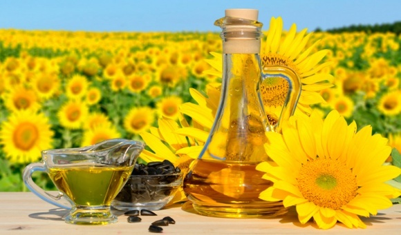 Ціни на соняшник нового врожаю можуть розчарувати аграріїв, — Украгроконсалт фото, ілюстрація