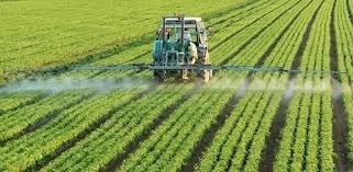 Французские фермеры: три года слишком мало для замены глифосата фото, иллюстрация