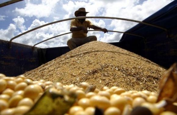В Бразилии скандал с соей, «обогащенной» песком, закончился уголовными делами фото, иллюстрация
