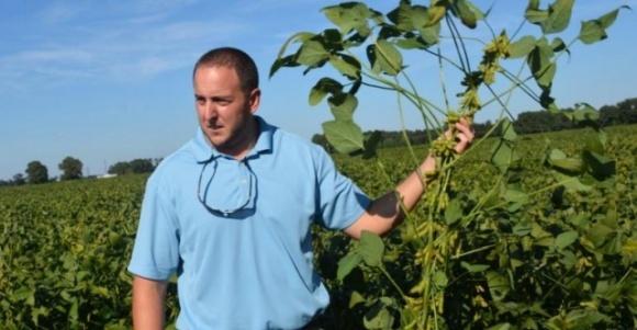 Світовий рекорд врожайності сої 11,5 тон/га фото, ілюстрація