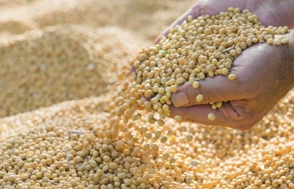 Аграрии призывают налоговый комитет ВР принять законопроект 7403-2 фото, иллюстрация