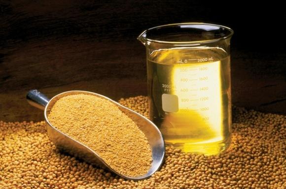 Верховна Рада захистила права та законні інтереси сільгоспвиробників, які експортують олійні культури фото, ілюстрація