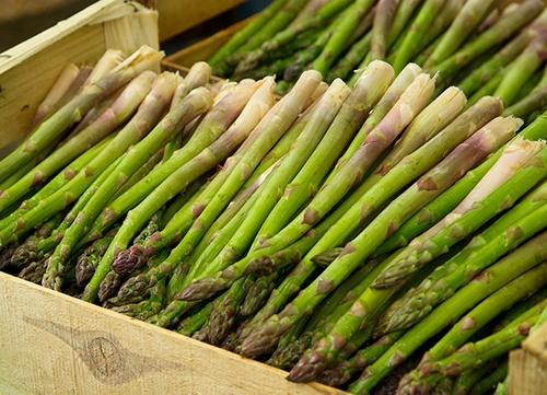 Експортним овочем №1 в Україні за 10 років буде спаржа, - Ярмак фото, ілюстрація
