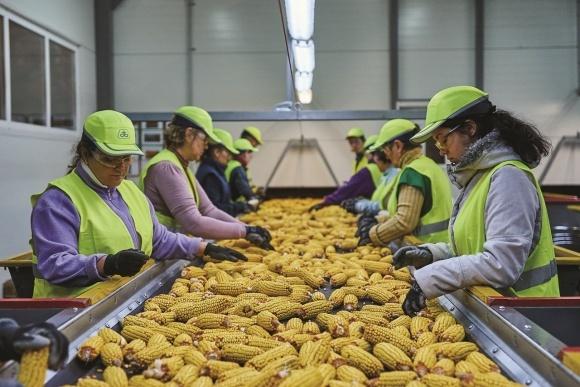 Corteva Agriscience повністю забезпечила сільгоспвиробників насінням та засобами захисту до посівної-2021 фото, ілюстрація