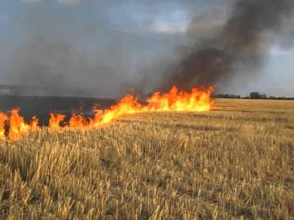 Тернопільський підприємець допоміг рятувальникам загасити пожежу на полі фото, ілюстрація