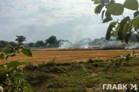 Украина в огне: крестьяне массово жгут солому  фото, иллюстрация