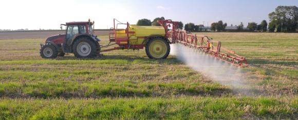 Очищуємо поля від бур'янів після збирання врожаю фото, ілюстрація