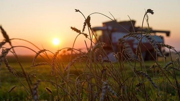 Какие инструменты помогут фермеру минимизировать влияние погоды? фото, иллюстрация