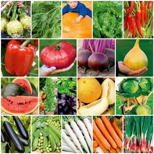 В Україні різко виріс попит на насіння овочевих культур фото, ілюстрація