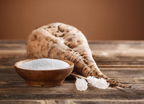 Україна отримала дозвіл на міжнародну торгівлю насінням цукрового буряку фото, ілюстрація