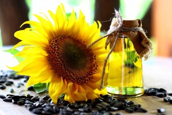 Ціни на соняшникову олію в Україні зростають через активний експорт — аналітики компанії Pro-Consulting фото, ілюстрація