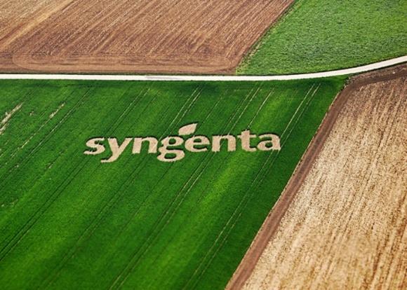 Фермеры стали чаще интересоваться продуктами-аналогами СЗР, - Syngenta фото, иллюстрация