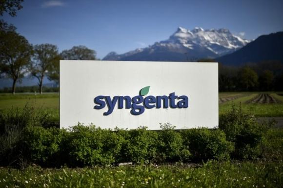 Syngenta совместно с банками-партнерами запустила программу финансирования посевной фото, иллюстрация