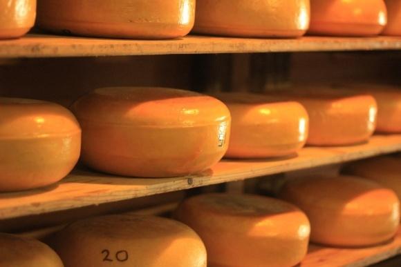 Продукция сыроделов снова начала оседать на складах фото, иллюстрация