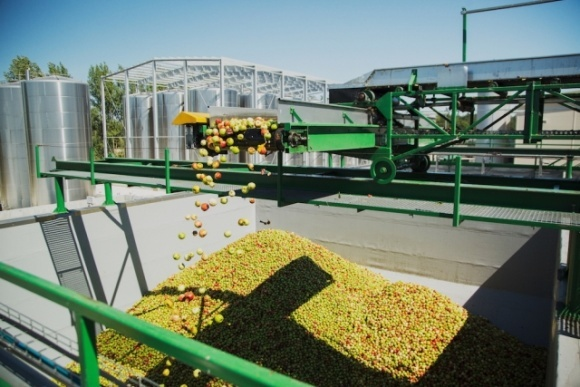 Каждая 10-я бутылка сока в мире сделана из фруктов и ягод, переработанных украинской компанией T.B. Fruit фото, иллюстрация