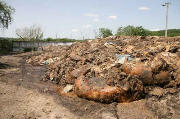 Тернопольщину может постигнуть экологическое бедствие фото, иллюстрация