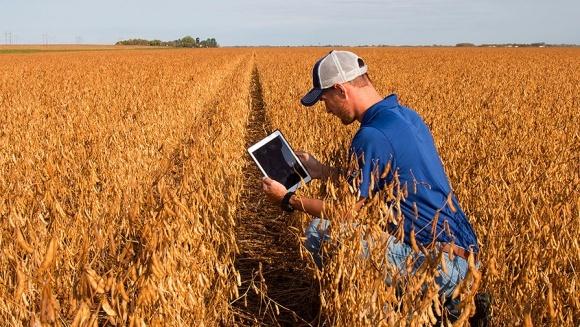 Фермеры превращаются в управляющих мини-хедж-фондами фото, иллюстрация