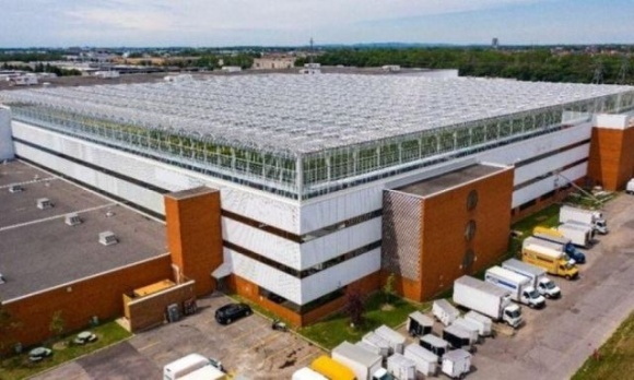 В Канаде открыли крупнейшую в мире теплицу на крыше фото, иллюстрация