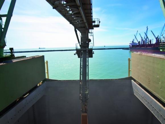 Сінгапурська компанія Olam побудує зерновий термінал в Україні фото, ілюстрація