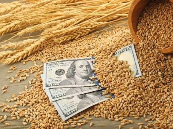 Через незнання процедур продажу на експорт, фермери втрачають 15-25 млрд грн щорічно, — експерт фото, ілюстрація