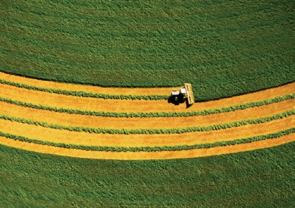 Точные технологии в Украине внедрены на 15% сельхозугодий фото, иллюстрация
