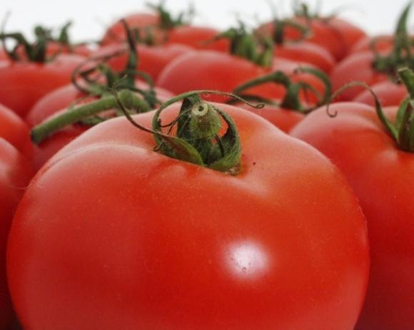 Пропозиція помідорів на півдні України різко знизилася, а ціни зросли фото, ілюстрація