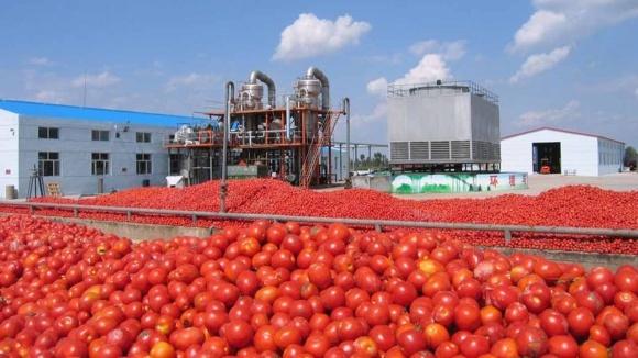 IFC надасть Agrofusion кредит на $17 млн фото, ілюстрація