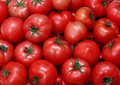 Україна продовжує активно нарощувати імпорт томатів фото, ілюстрація