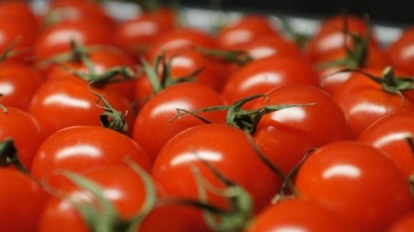 Українські виробники томатів хочуть більших безмитних квот в оновленій Угоді про асоціацію фото, ілюстрація