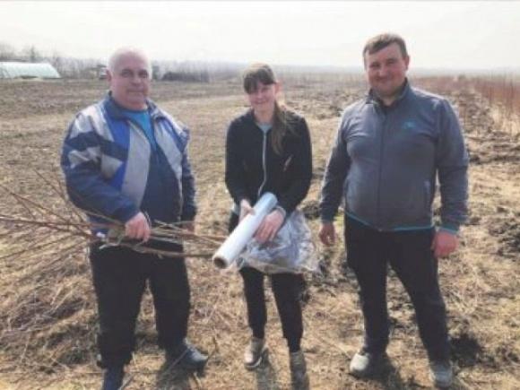 Молодая семья из Волыни изменила городскую жизнь на сельскую и занялась выращиванием саженцев фото, иллюстрация