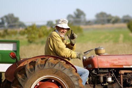 На Хмельничине безработных обучают сельхозпрофессиям фото, иллюстрация