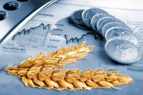 Аграрії закликали владу не допустити ухвалення пропозицій ДФС щодо скасування ПДВ для операцій з зерновими і олійними фото, ілюстрація