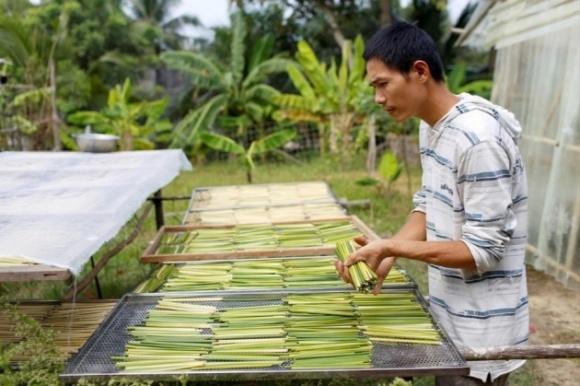 В'єтнамець виготовляє трубочки з рослинної сировини замість пластику фото, ілюстрація