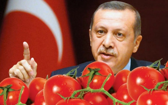 Зеленський та Ердоган домовилися про кроки, що наблизять підписання угоди про вільну торгівлю фото, ілюстрація
