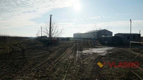 На Вінниччині фермери «відбили» свою землю в екс-регіонала фото, ілюстрація