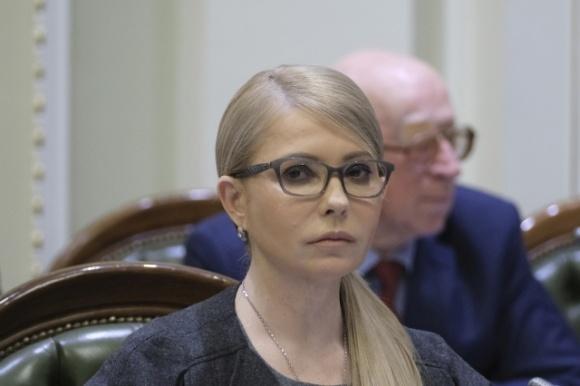 «Батькивщина» требует отстранения председателя аграрного комитета и создание ВСК по расследованию коррупции в земельном законе фото, иллюстрация