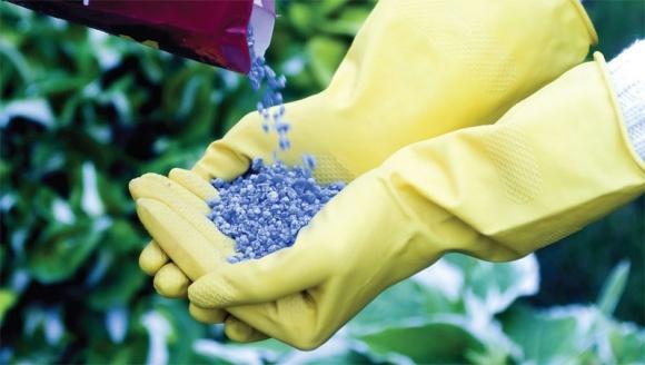 Как решить проблему дефицита на рынке минеральных удобрений Украины? фото, иллюстрация