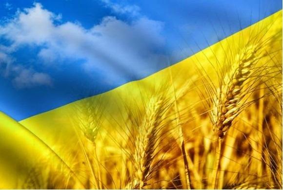 ТОП-11 достижений аграрной Украины фото, иллюстрация