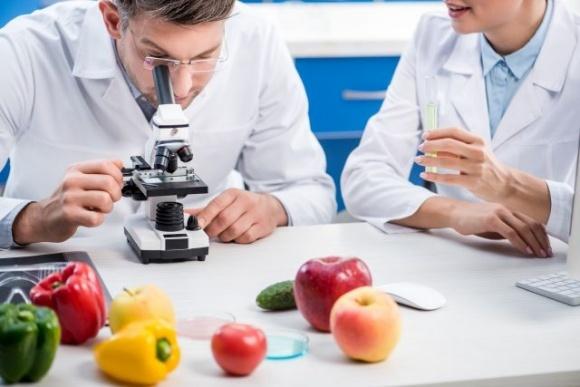 Исследуем плодоовощную продукцию в лабораторных условиях фото, иллюстрация