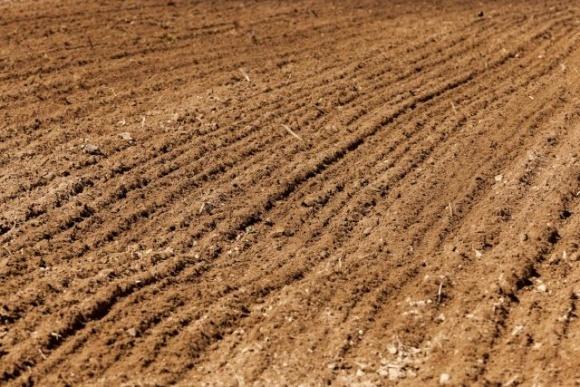 Исследование почвы как предпосылка высокой урожайности фото, иллюстрация