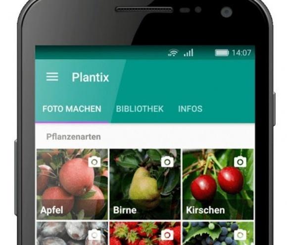 Самообучающееся приложение Plantix поможет мониторить посевы фото, иллюстрация