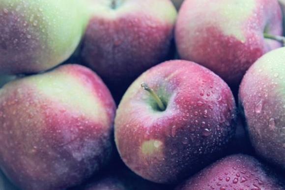 Українські виробники яблука роблять акцент на експорт до країн Близького Сходу та Південно-Східної Азії фото, ілюстрація