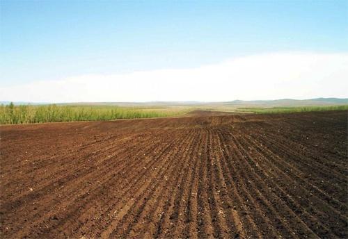 Эксперт назвал 3 проблемы при передаче земли ОТГ фото, иллюстрация