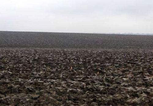МХП заинтересован в покупке земли в Украине фото, иллюстрация
