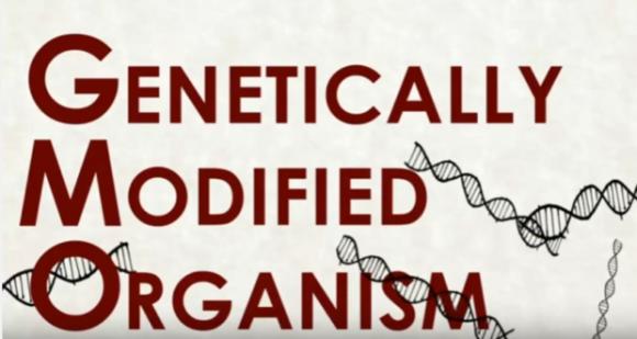 Министр сельского хозяйства Бразилии написал книгу о ГМО фото, иллюстрация