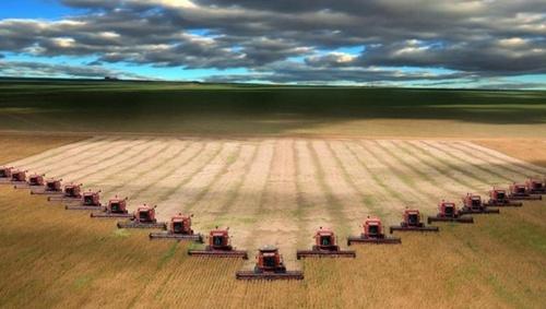 Нинішній сільськогосподарський сезон побив декілька рекордів фото, ілюстрація