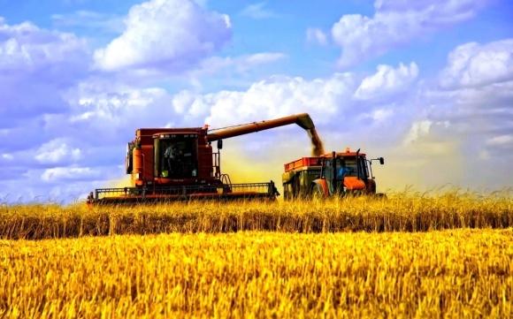 Урожай-2017: в Україні зібрано майже 20 млн т ранніх зернових фото, ілюстрація